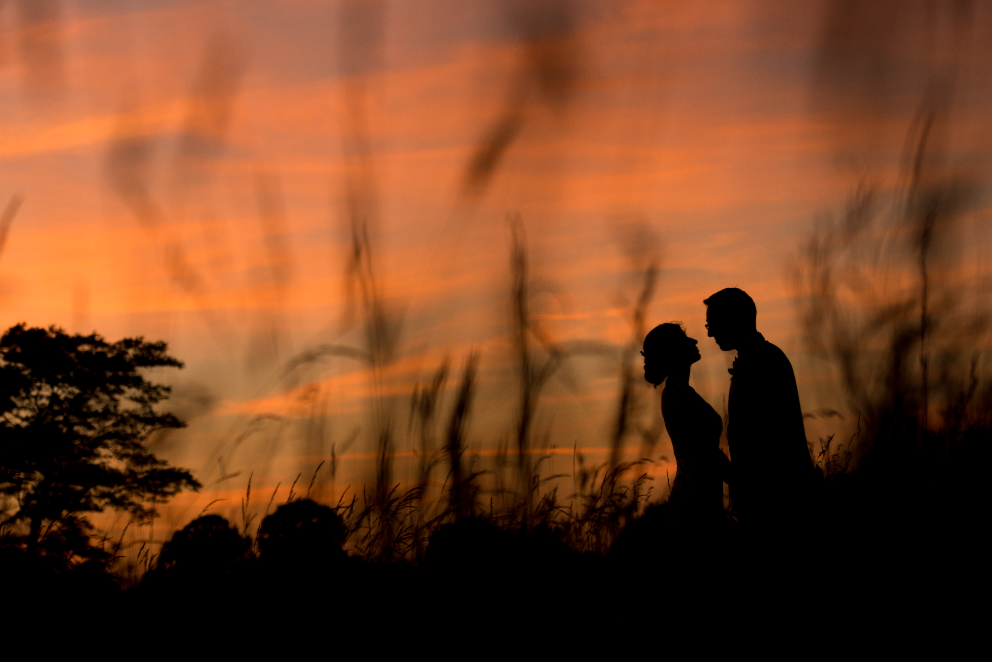 Silhouette of Bride and Groom at Willow Creek Country Club | Lotus Wedding Photography
