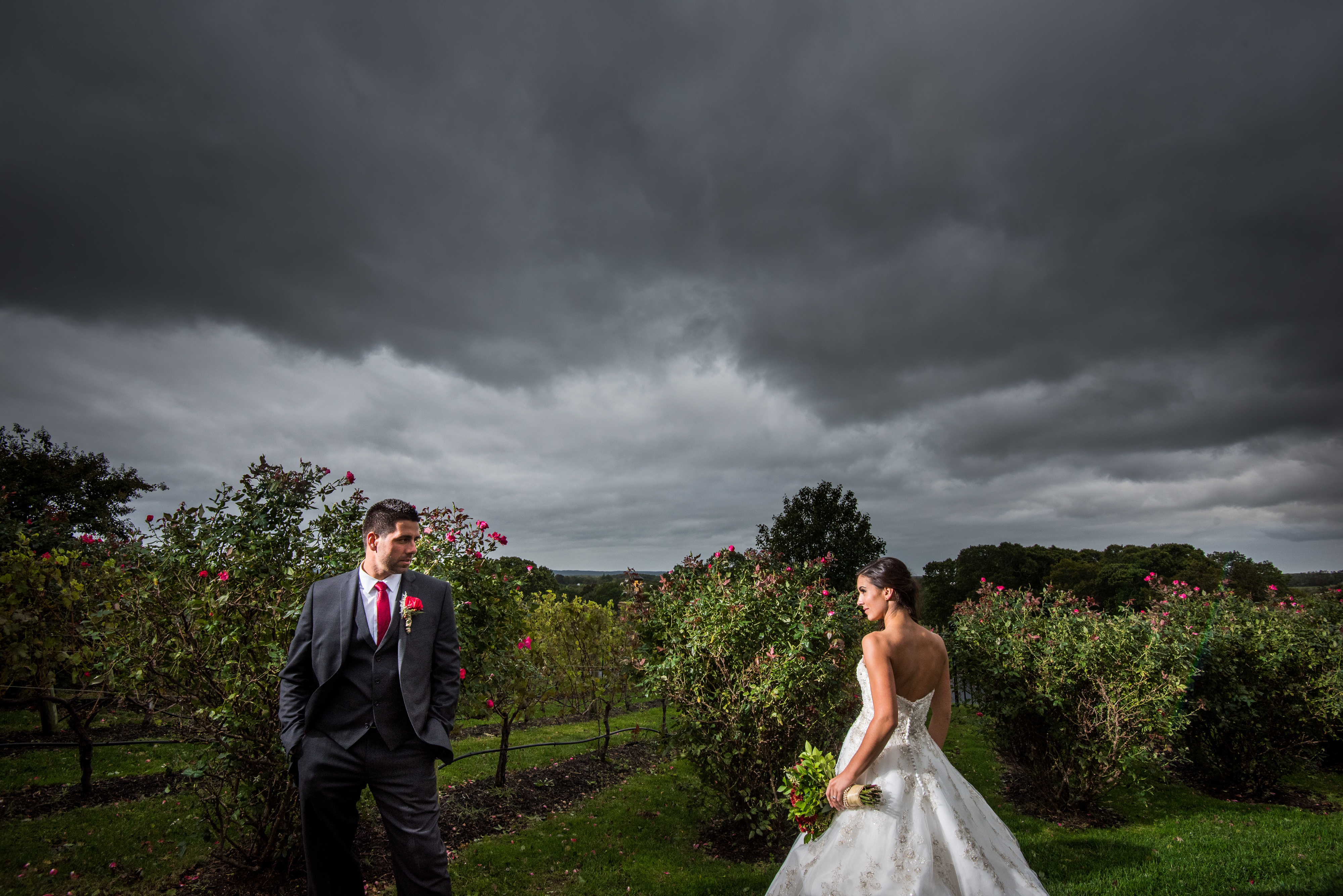 Newlyweds pose in a Giorgio's Baiting Hollow vineyard | Lotus Wedding Photography